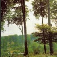 wentzely dénes üzen az erdő