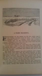 magyar földön vadászkönyv