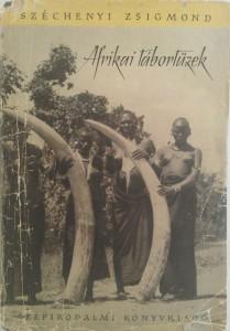 afrikai tábortüzek