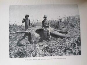 kittenberger Vadász és gyűjtőúton Kelet-Afrikában elso kiadas