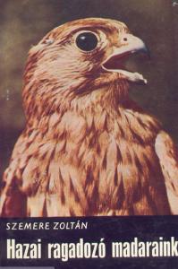 hazai ragadozó madaraink