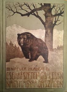 cserkészeten és lesen nagymagyarországon 1926