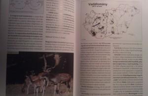 vadásziskola könyv