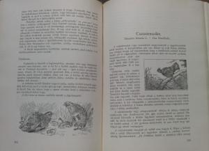 vadászkönyv3