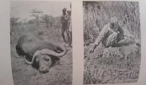 horthy afrikai vadászat