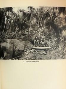 kittenberger az elefántvadász