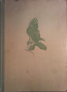 szárnyas vadászmesterek