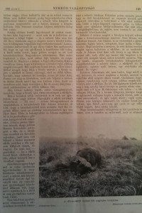 nimród vadászlap 1926 (3)
