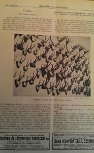 nimród vadászlap 1926 (4)
