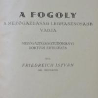 Friedreich István - A Fogoly