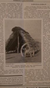 nimrüd 1929es évfolyam