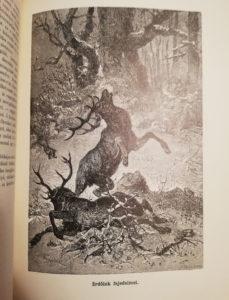 donászy ferenc vadászkönyv