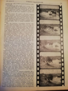 nimród 1931 újság
