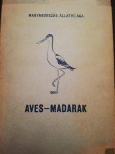 Aves - Madarak