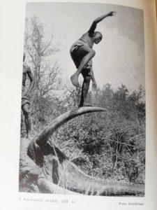 Gróf Széchenyi Zsigmond – Elefántország regi kiadas