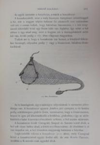 herman A magyar halászat könyve