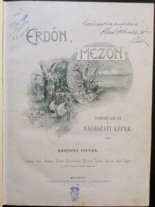 Bársony István - Erdőn mezőn 1894