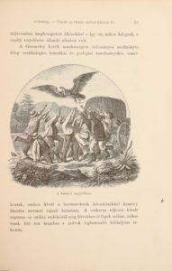 holub emil 2