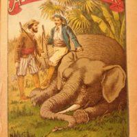 Az elefántvadászok